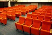 Scaune cinema 2g